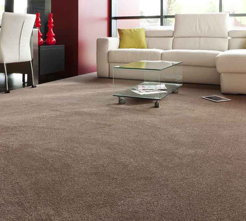 carpet_cleaners_in_the_area
