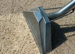 rug-cleaning-north-sydney